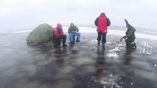 Peipsi Чудское озеро  зимняя рыбалка д.Спицино  крупная отборная плотва!