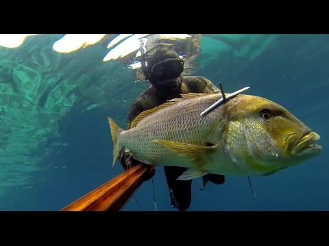 video chasse sous marine corse 2015