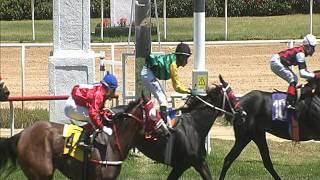 Vidéo de la course PMU PREMIO RICARDO CHELLEW S.