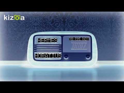 300 ROME RADIO