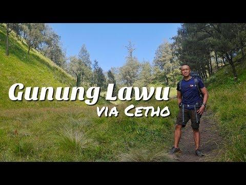 GUNUNG LAWU VIA CETHO (SOLO HIKING) | VLOG #7