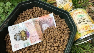 100lb On £10 Fishing Challenge!