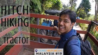 Adventure in Tea Gardens: Cameron Highlands, Munnar of Malaysia thumbnail