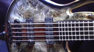 Bass Player Live! 2016 - Mayones