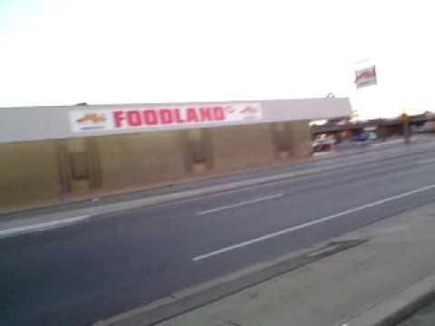 Adelaide hooker