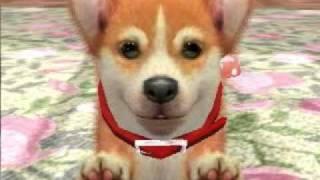 Nintendogs+cats: My Dog, Tarzan