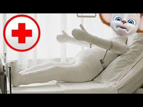 Малыш упал и сломал лапу! Барбоскины - 6 серия Мультфильм для детей.