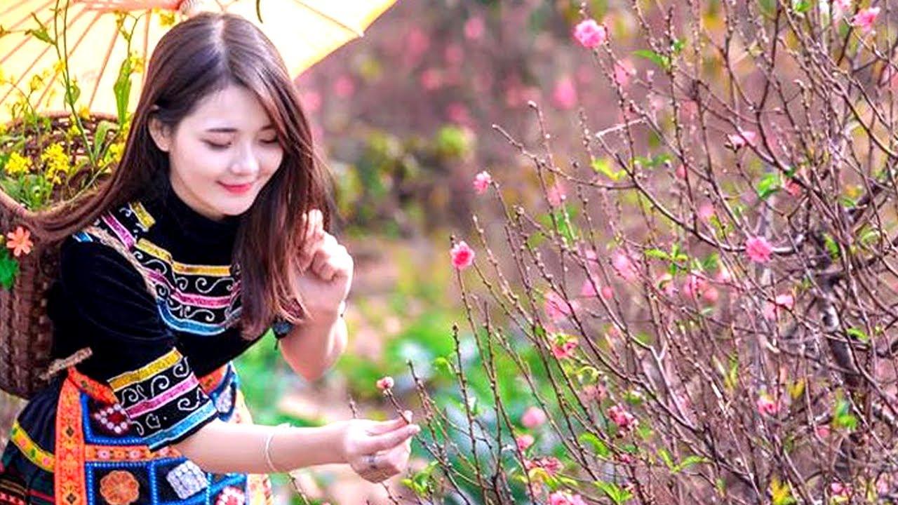 Vietnamese New years 2020, Vietnam Flower market on Lunar ...