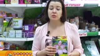 Луковицы цветов  Новинки  2014 года(, 2014-02-27T07:19:47.000Z)