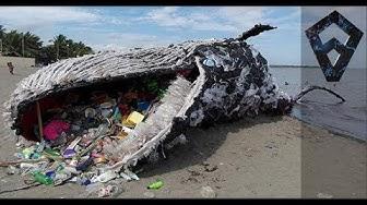 Kuinka Paljon Maailman Merissä On Muovia?