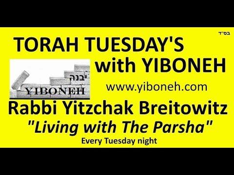 Rabbi Yitzchak Breitowitz: Rav Kooks Ascension To Heaven