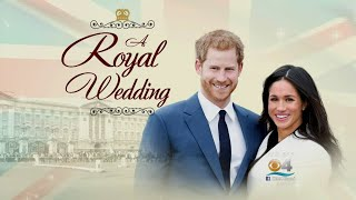 CBS4 News Bianca Peters On How To Enjoy The Royal Wedding As If You Were There