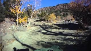 ATV Ride Through ElDorado Canyon, Dayton Nevada In Joe