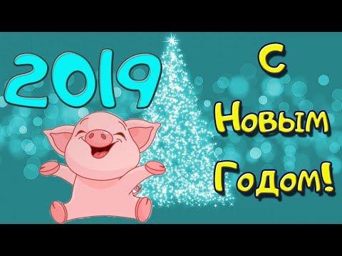 Вот это поздравление! ЖМИ! С Наступающим НОВЫМ 2019 годом! - Лучшие приколы. Самое прикольное смешное видео!