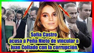 SofГa Castro acusa a PeГ±a Nieto de vincular a Juan Collado con la corrupciГіn.