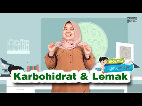 (Video Ruangguru) - Ruangbelajar - Biologi SMA XI - Karbohidrat U0026 Lemak | Bimbel Online