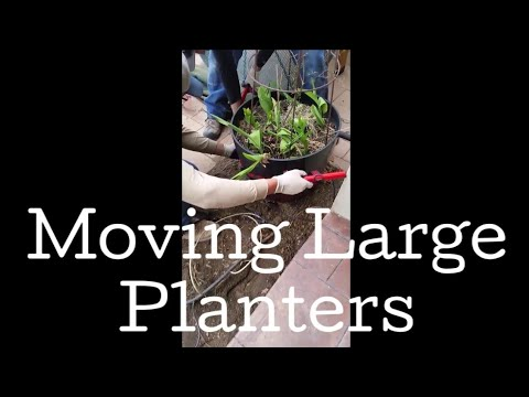How to Move Big Planters (or other large objects) - using the pot lifter