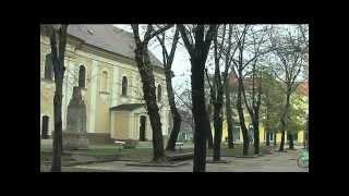 Kikinda: prestonica sova, TV Mreža, RTS2
