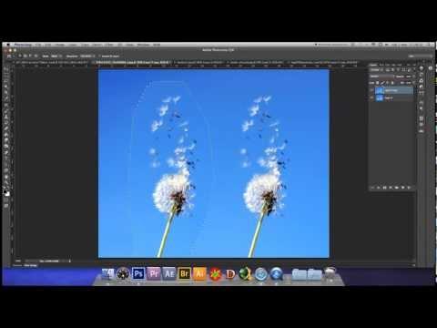 Spostare il contenuto di un'immagine in Photoshop CS6
