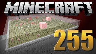 Farm de Ouro Insana! - Minecraft Em busca da casa automática #255