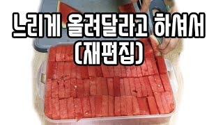 [ENG Sub] 우리 집 수박 자르는 법 2탄 ('Another way to slice watermelon' re-edited)