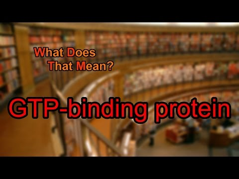 What does GTP-binding protein mean?