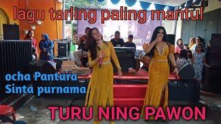 Tarling Paling Mantul    Turu Ning Pawon    Cover    Ocha Pantura    Radjata Feat GPHE