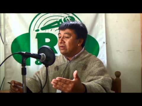 IV Congreso Lafkenche, Hualaihue 2014  entrevista radio Hualaihué, 1feb14