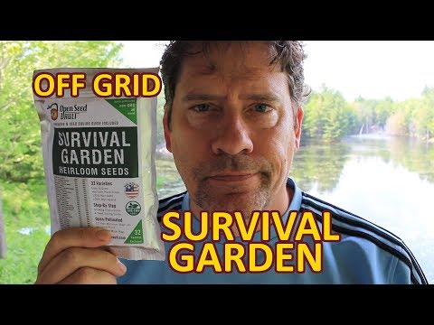 Off Grid Cabin Survival Garden