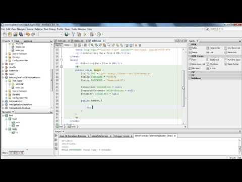 Creating a JSP Web Application That Interfaces With A Database