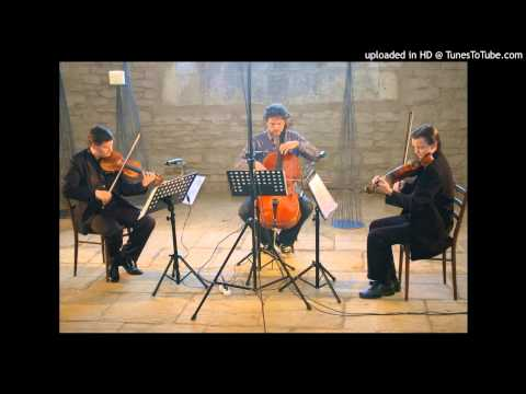 Johann Sebastian Bach - Goldberg Variations part 1
