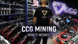 CCG MINING - How crypto farm Works?