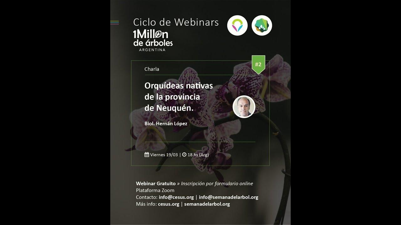 Disfruta el #2 Webinar 2021: Orquídeas Nativas de la Prov. del Neuquén