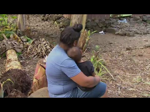 Measles epidemic: 'A very sad time for Samoa' as death toll rises