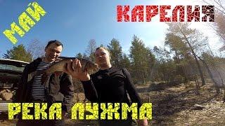 Рыбалка в Карелии, река Лужма в мае