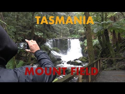 Tasmania: Mt Field National Park - Lost in Australia