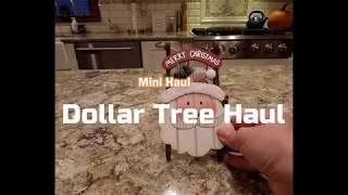 Dollar Tree Mini Haul 2018