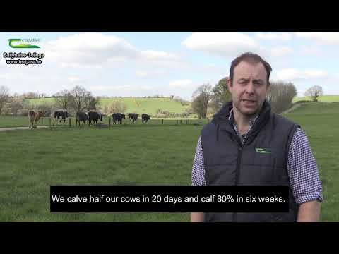 Dairy Enterprise at Ballyhaise College – Donal Patton
