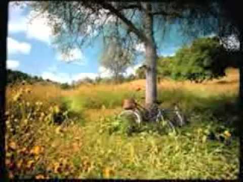La petite maison dans la prairie avec le chien snoopy d youtube - La petit maison de la prairie ...