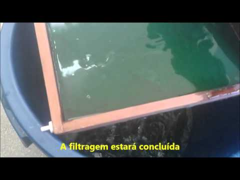 Cultive spirulina em casa - Parte 3, Colheita e processamento