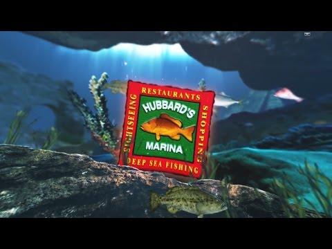 Kingfish trolling 39 hour long range | Deep Sea Fishing Charters | http://www.HubbardsMarina.com