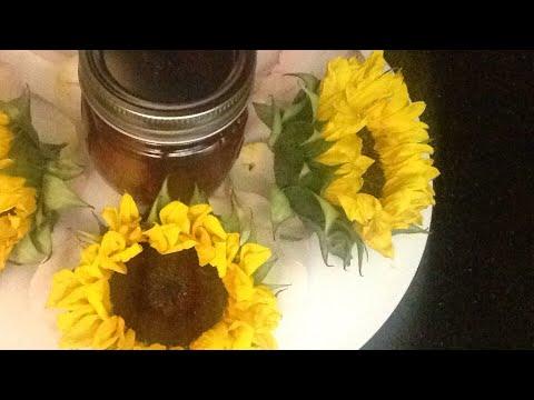 Create Your Own Hoodoo Honey Jar for Love 🍯🌻