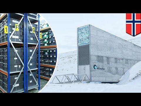 'Doomsday vault' Norway: How the Svalbard Global Seed Vault works - TomoNews