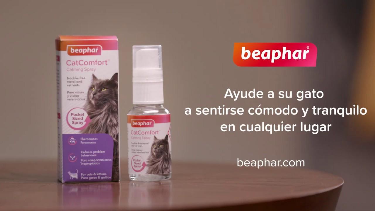 Antiestrés para gatos Beaphar CatComfort Spray