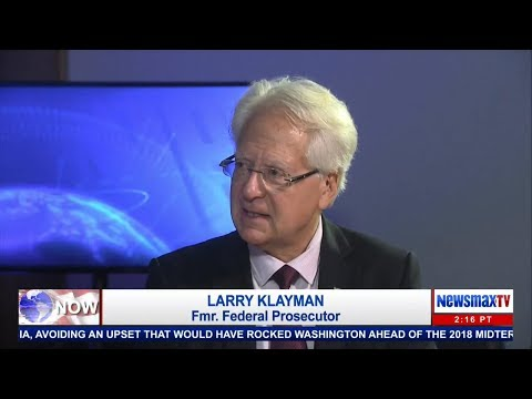 Larry Klayman, Liz Peek and Ed Pozzuoli discuss the Michigan airport terror attack