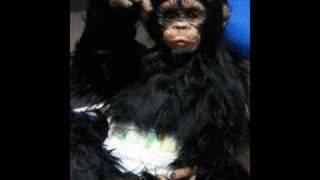 樹脂粘土でチンパンジーを作りました。