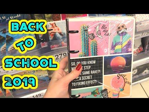 БЭК ТУ СКУЛ 2019 и Новые ИДЕИ для ЛД | Back to school 2019 покупки к школе 2019
