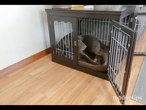 unipaws End Table Dog Crate Review