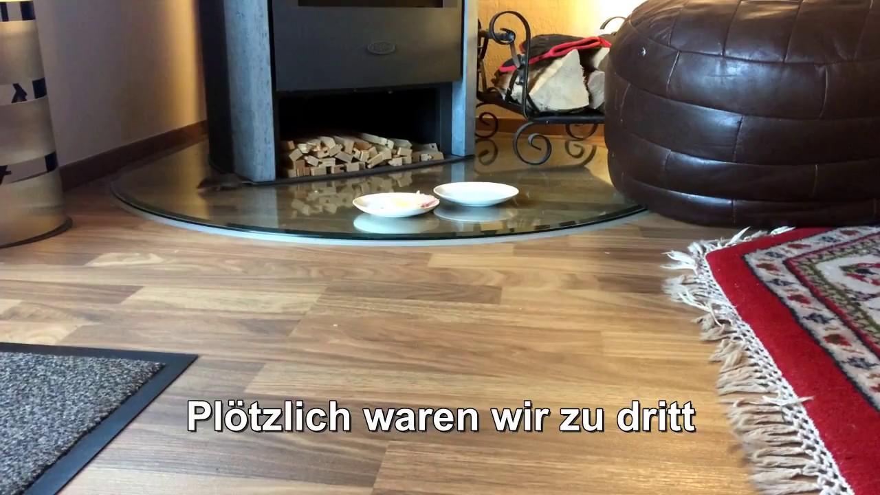 Maus Im Haus Youtube