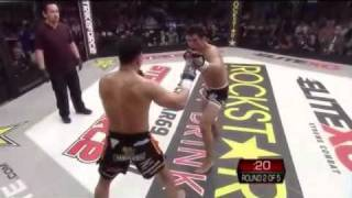 Cung Le vs. Frank Shamrock - Part 2